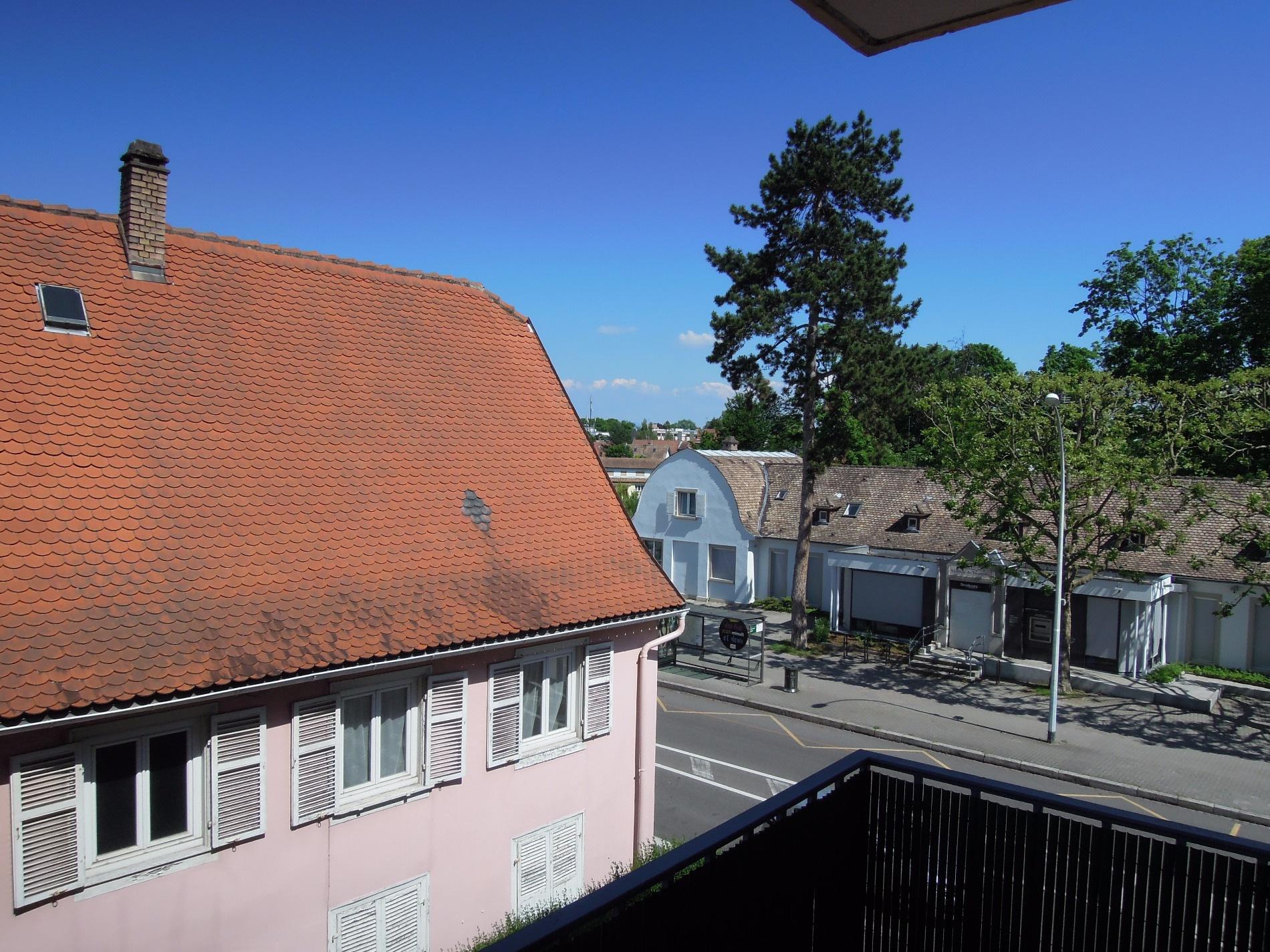 Vente Strasbourg Robertsau Investissement Locatif Appartement F5 De 90m